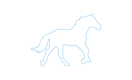 Horses & Rides